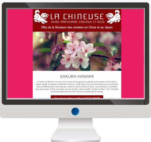 Vente d'objet asiatique<br>Newsletter